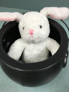 Caught in Jonathan's trap, this is the rabbit that Proctor seasons with the salt.